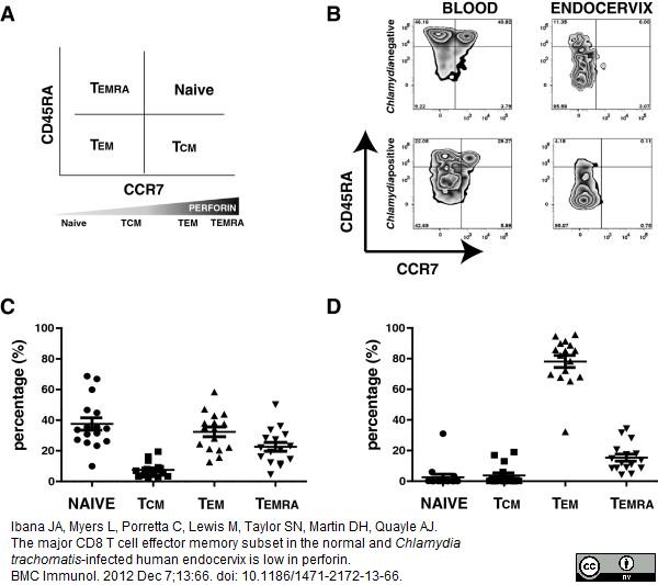 CD45RA Antibody | F8-11-13 gallery image 5