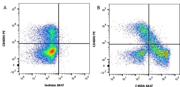 CD45RA Antibody | F8-11-13 gallery image 4