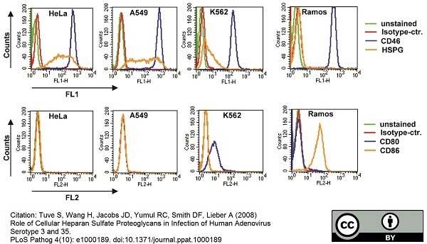 CD46 Antibody | MEM-258 gallery image 3
