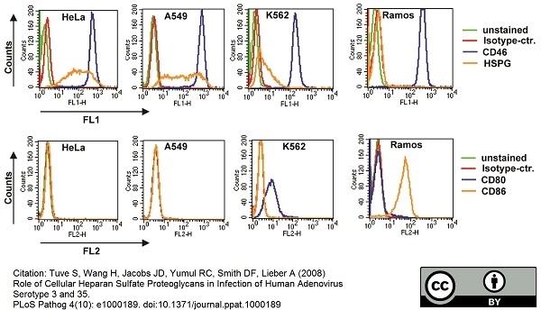 CD46 Antibody | MEM-258 gallery image 7