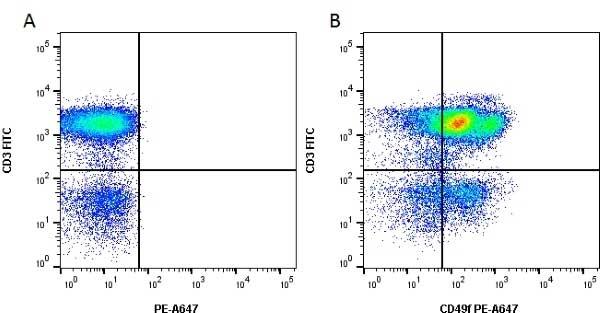 CD49f Antibody   NKI-GoH3 gallery image 4