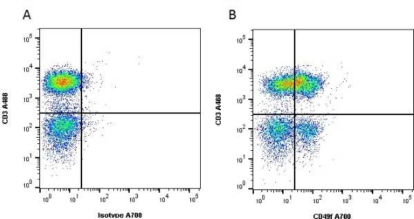 CD49f Antibody   NKI-GoH3 gallery image 2