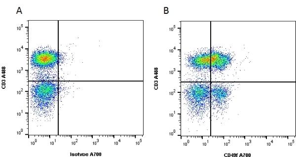 CD49f Antibody   NKI-GoH3 gallery image 1