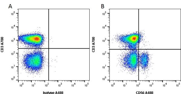 CD56 Antibody   123C3 gallery image 1