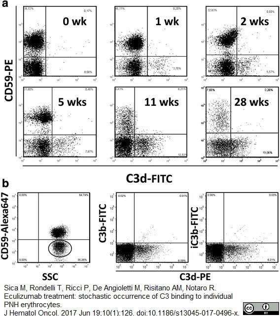 CD59 Antibody | MEM-43 gallery image 3