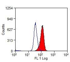 CD68 Antibody | KP1 gallery image 2