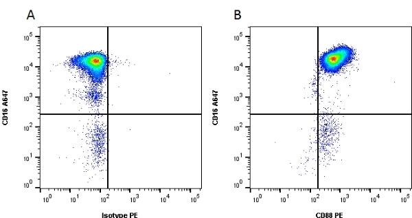 CD88 Antibody | P12/1 gallery image 1