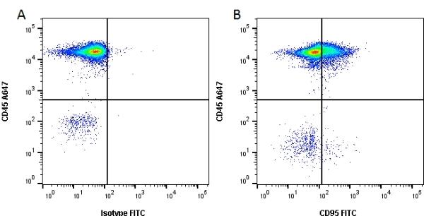 CD95 Antibody | LOB 3/17 gallery image 2