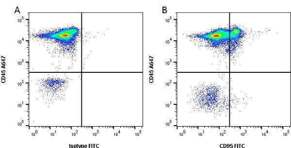 CD95 Antibody | LOB 3/17 gallery image 1