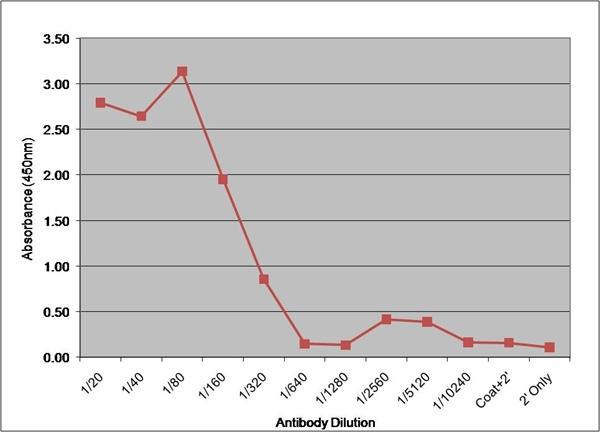 Factor VII Antibody | RFF-VII/1 gallery image 1