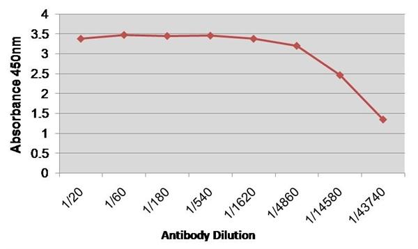 Factor VIII Antibody | RFF-VIIIC/5 gallery image 1