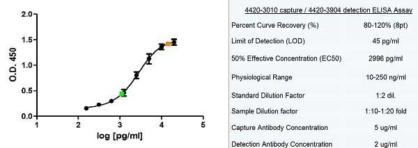 Ferritin Antibody   F23 (7A4) gallery image 2