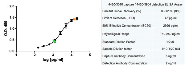 Ferritin Antibody | F23 (7A4) gallery image 2