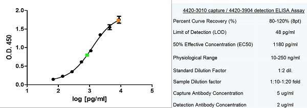 Ferritin Antibody   F23 (7A4) gallery image 1