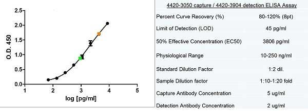 Ferritin Antibody   F31 (7B2) gallery image 1