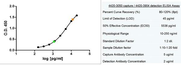 Ferritin Antibody   F31 (7B2) gallery image 2