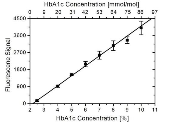 HbA1c Antibody | 15785 gallery image 1