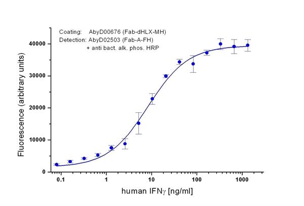 IFN Gamma Antibody | 0676 gallery image 1