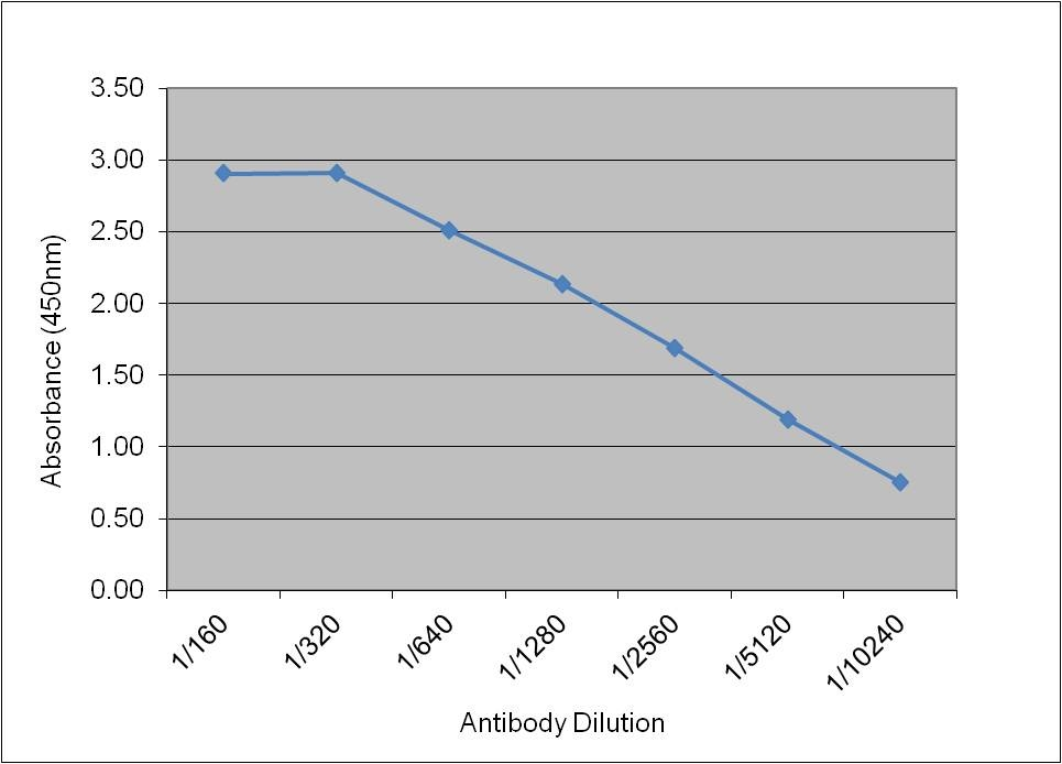 IGF-I Antibody | 71.5B8 gallery image 1