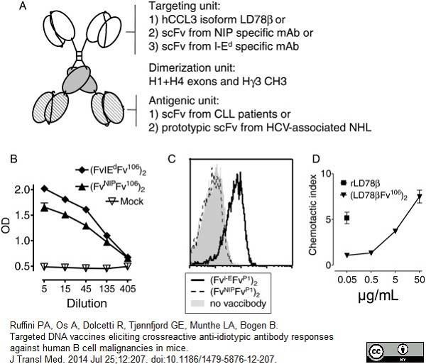 IgG Antibody | A57H thumbnail image 1
