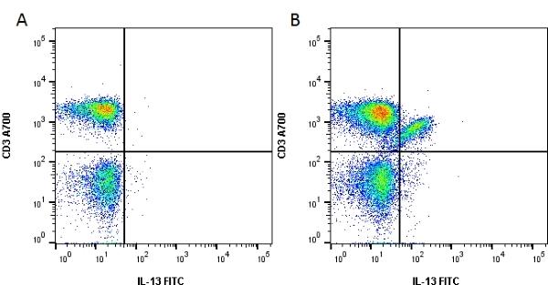 IL-13 Antibody | B-P6 gallery image 1