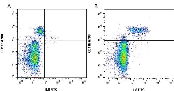 IL-8 Antibody   NAPII gallery image 1