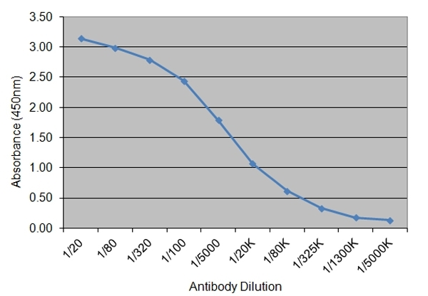 Insulin Antibody | 130.7H9 gallery image 1