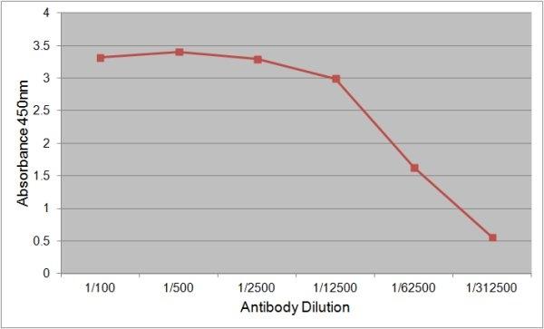Intrinsic Factor Antibody | 139.1A11 gallery image 1