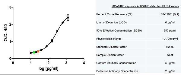 MCP-1 Antibody gallery image 3