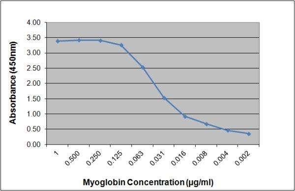 Myoglobin Antibody | 164.3A4 gallery image 1