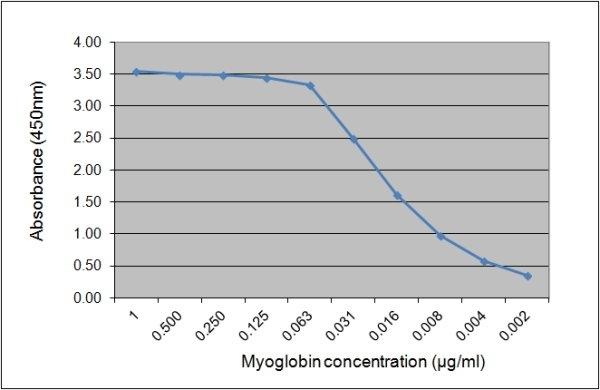 Myoglobin Antibody | 164.5B10 gallery image 1