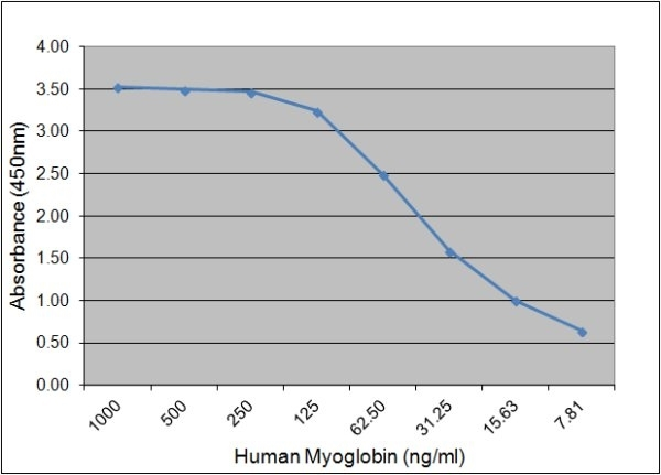Myoglobin Antibody   164.6G2 gallery image 1