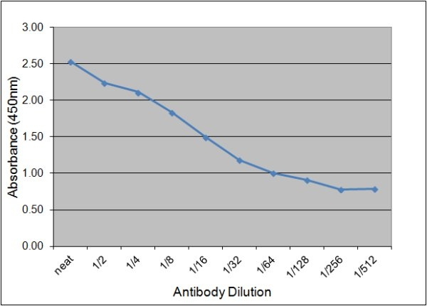Neuron Specific Enolase Antibody | 131.1C10 gallery image 1