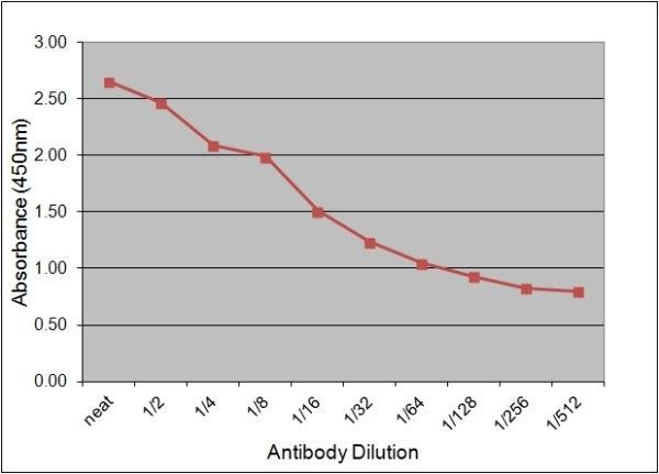 Neuron Specific Enolase Antibody | 131.1E9 gallery image 1