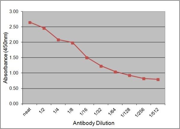Neuron Specific Enolase Antibody | 131.1E9 gallery image 2