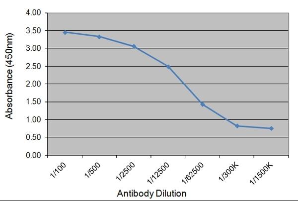 Placental Growth Hormone Antibody | 78.7C12 gallery image 1