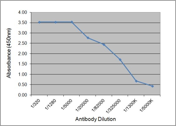 Prostate Specific Antigen Antibody | 58.8D9 gallery image 1
