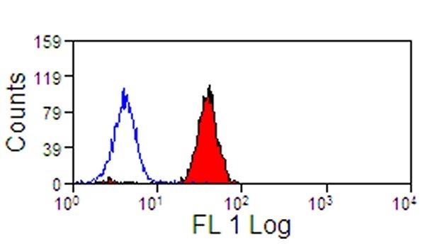 Siglec-9 Antibody | K8 gallery image 2
