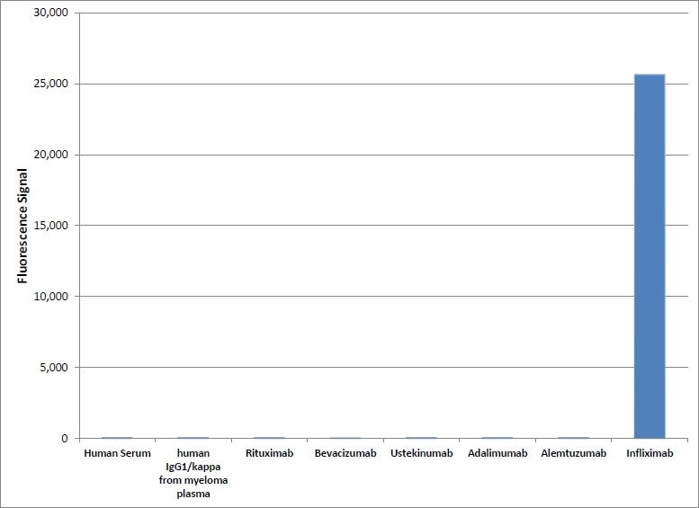 Infliximab Antibody | AbD17841_hIgG1 gallery image 1
