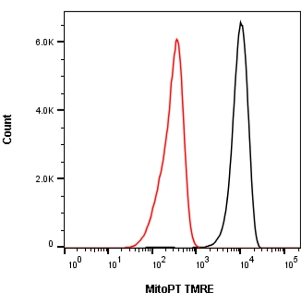 Mitochondrial Membrane Potential MitoPT™ TMRE Kit gallery image 1