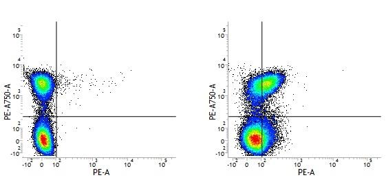 CD150 Antibody | 9D1 thumbnail image 7