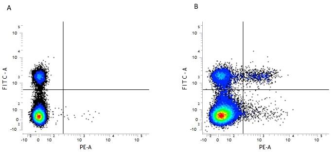 CD25 Antibody   PC61.5.3 gallery image 1