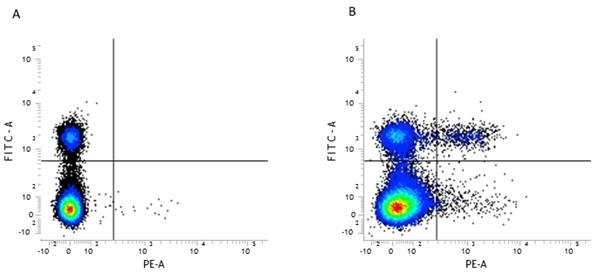 CD25 Antibody | PC61.5.3 gallery image 1