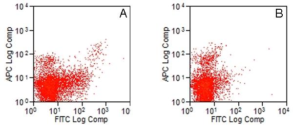 CD283 Antibody | 11F8 gallery image 1