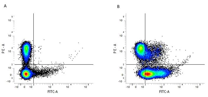 CD29 Antibody | HM beta 1-1 gallery image 1