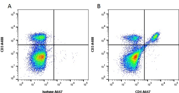 CD4 Antibody | RM4-5 gallery image 1