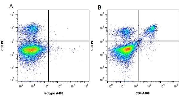 CD4 Antibody | RM4-5 gallery image 2