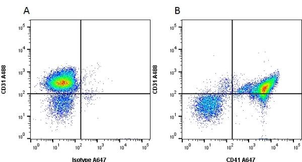 CD41 Antibody | MWReg30 gallery image 3