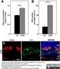 CD45 Antibody | IBL-3/16 thumbnail image 12