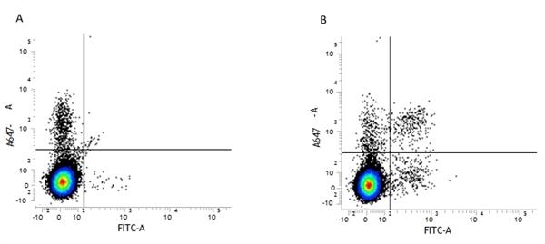 CD49b Antibody | DX5 gallery image 3